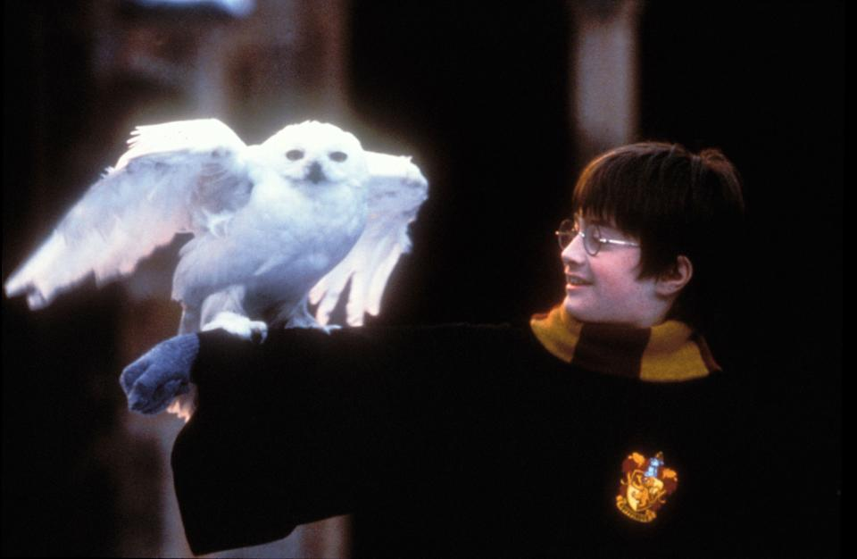 "Daniel Radcliffe in ""Harry Potter And The Sorcerer's Stone."" (Photo: Peter Mountain/WireImage/Getty Images)"