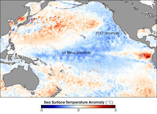 Cool Pacific Ocean Slowed Global Warming