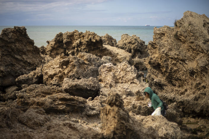 A woman cleans rocks covered in tar from an oil spill in the Mediterranean sea in Gador nature reserve near Hadera, Israel, Saturday, Feb. 20, 2021. Hundreds of volunteers are taking part in a cleanup operation of Israeli shoreline as investigations are underway to determine the cause of an oil spill that threatens the beach and wildlife, at Gador Nature Reserve near the northern city of Hadera, the tar smeared fish, turtles, and other sea creatures. (AP Photo/Ariel Schalit)