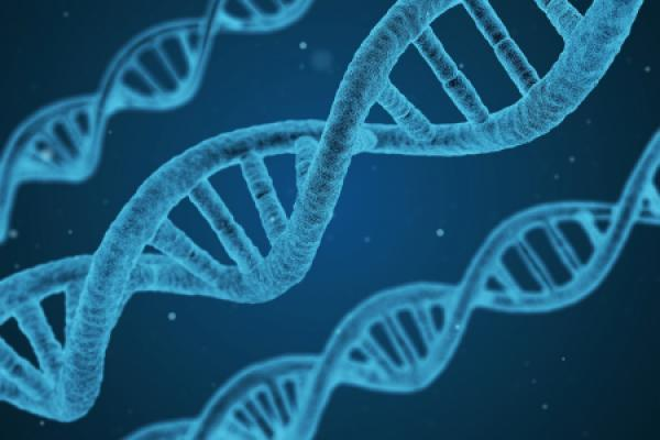 Roche inks US$1.15b licensing deal for Sarepta gene therapy