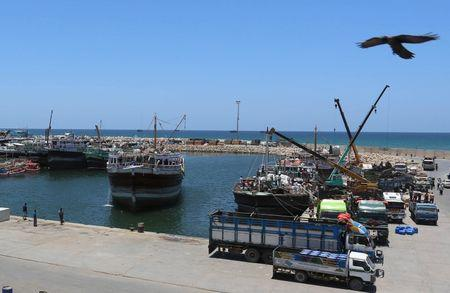 An eagle over flies at the Port of Bosaso in Somalia's Puntland