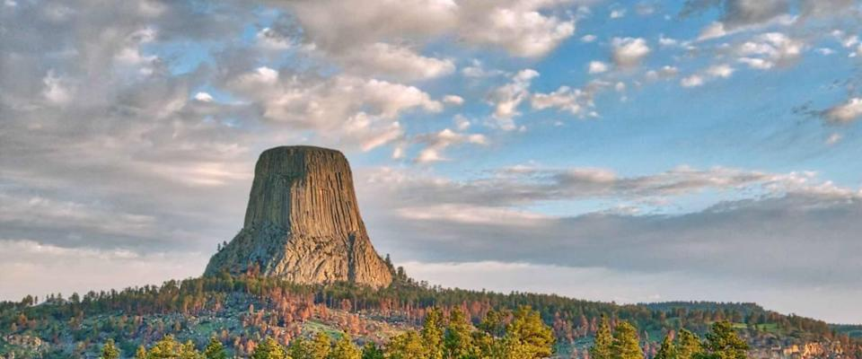 Devil's Tower National Monument in Wyoming Under the Early Morning Cloudy Sky with the forest in the foreground