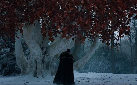 Jon visits the weirwood tree