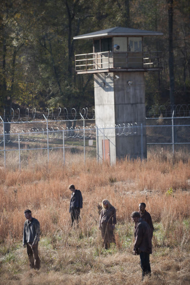 "Walkers in ""The Walking Dead"" Season 3 Finale, ""Welcome to the Tombs."""