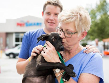 Five Reasons to Adopt a Four-Legged Family Member Well Before the Holiday Season