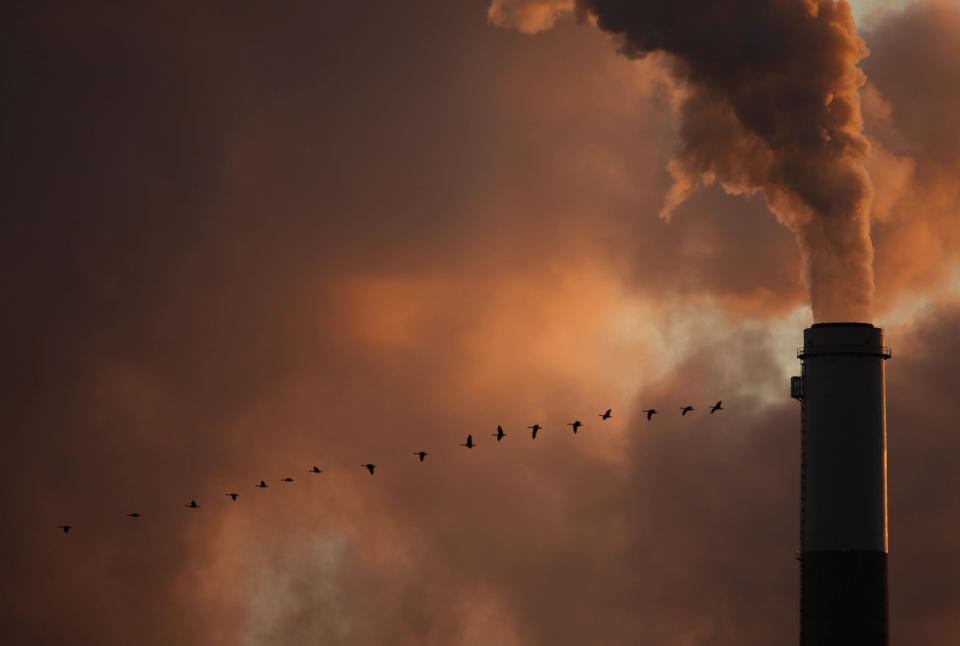 FILE - In this Jan. 10, 2009, file photo, a flock of geese fly past a smokestack at a coal power plant near Emmitt, Kan. The Biden administration said Thursday, Feb. 4, 2021, it was delaying a rule finalized in former President Donald Trump's last days in office that would have drastically weakened the government's power to enforce a century-old law protecting most wild birds. (AP Photo/Charlie Riedel, File)