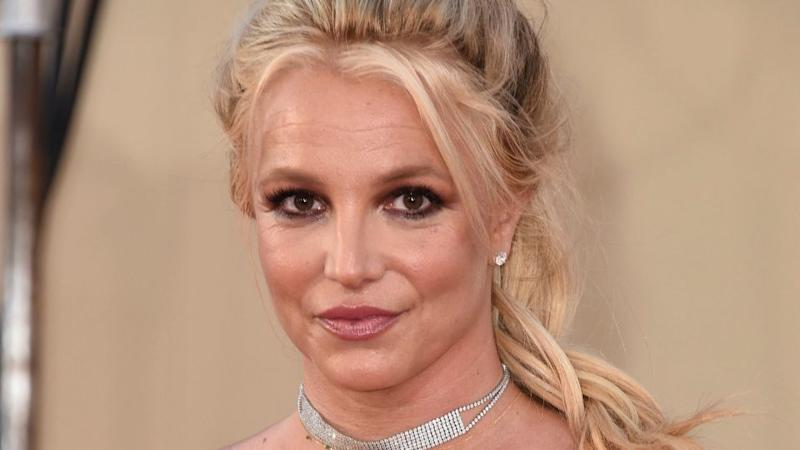 OMG—Britney Spears Is Brunette Again?!