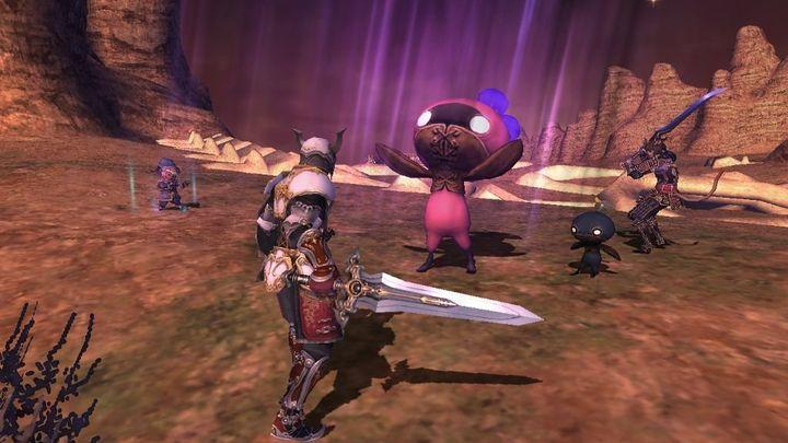 Final Fantasy 11 comes to an end on PS2 and Xbox 360 next year