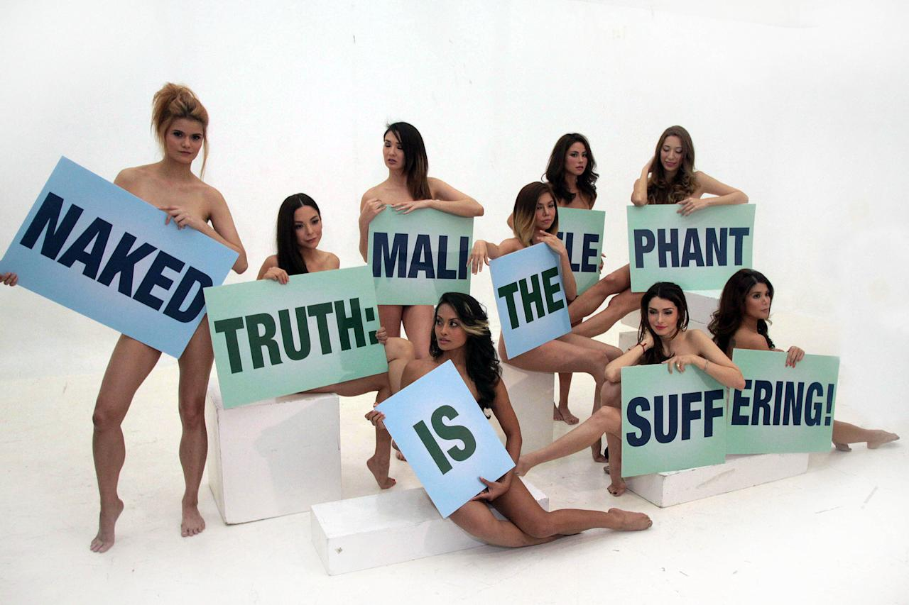 "Supermodels pose naked in support to PETA's campaign to free the Manila zoo elephant ""Mali"". The models from L-R are Sanya Smith, Amanda Griffin, Sheena Vera Cruz, Ornusa Cadness, Bianca Valerio, Julia Sniegowski, Daiana Menezes, Mia Ayesa and Geneva Cruz. Held at DPI XL Studio in Makati, southeast of Manila on 05 February 2013. (George Calvelo/NPPA Images)"