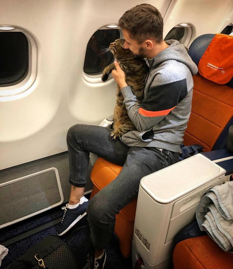Mikhail Galin and his cat Victor on the flight to Vladivostok (Mikhail Galin)