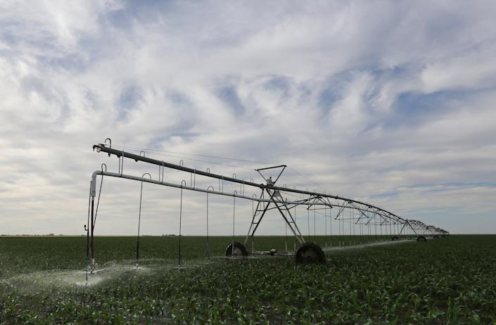 """An irrigation pivot sprays water onto a young corn crop in Grant County, Kans., in 2015. <span class=""""copyright"""">Travis Heying—Wichita Eagle/Tribune News Service/Getty Images.</span>"""