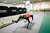 The high-tech hound uses sensors and AI to 'hear' and 'see' its environment - and can even be taken for walks
