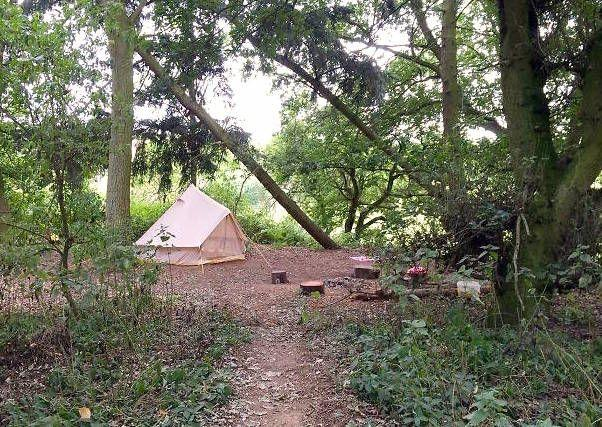 Photo credit: Little Ropers Woodland Camping
