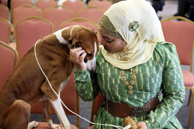 In this Tuesday, Feb. 4, 2020 photo, retired Philadelphia police officer Aliya Taylor poses with her Azawakh named Bahir at a Westminster Kennel Club news conference in New York. The Azawakh is a new breed to the Westminster show this year. There arent many Muslims in the dog show world, and Taylor says shes never seen another handler wearing a hijab in the ring. Taylor and her dog arent in the Westminster show this year, but hope to participate next year in Americas most prestigious dog event. (AP Photo/Jennifer Peltz)