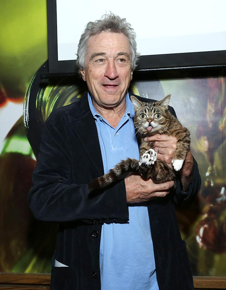 Robert De Niro got cozy with a furry feline named Lil Bub when he attended the Directors Brunch at the 2013 Tribeca Film Festival on Tuesday. Is Bub's tongue is always like that or does he just do that trick at film festivals? (4/23/2013)