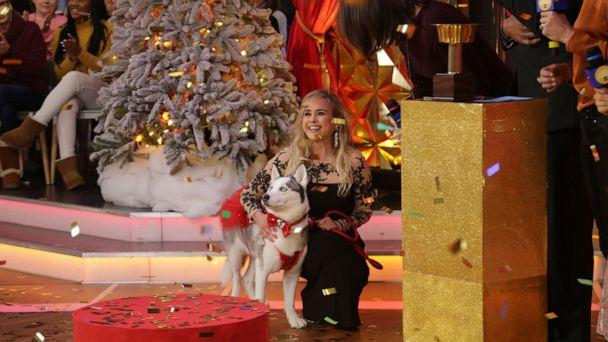 PHOTO: Izzy the Husky took the crown as Pet of the Year for 'Good Morning America's' first-ever awards. (ABC News)