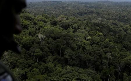 FILE PHOTO: A policeman observes the Amazon rainforest during an operation conducted by agents of the Brazilian Institute for the Environment and Renewable Natural Resources, or Ibama, near Novo Progresso, southeast of Para state