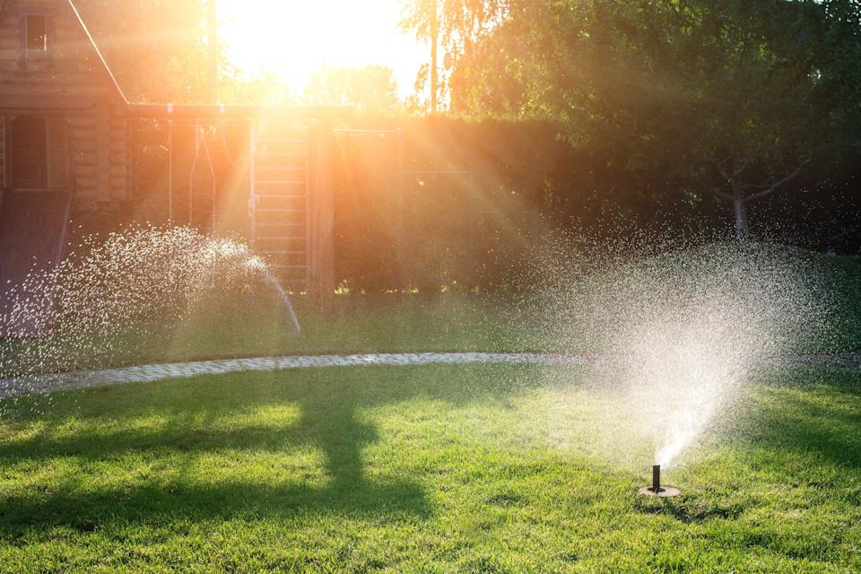 Rachio works with your existing irrigation system to create tailored smart schedules based on the specific needs of your lawn, including plant type, soil type and sun exposure.