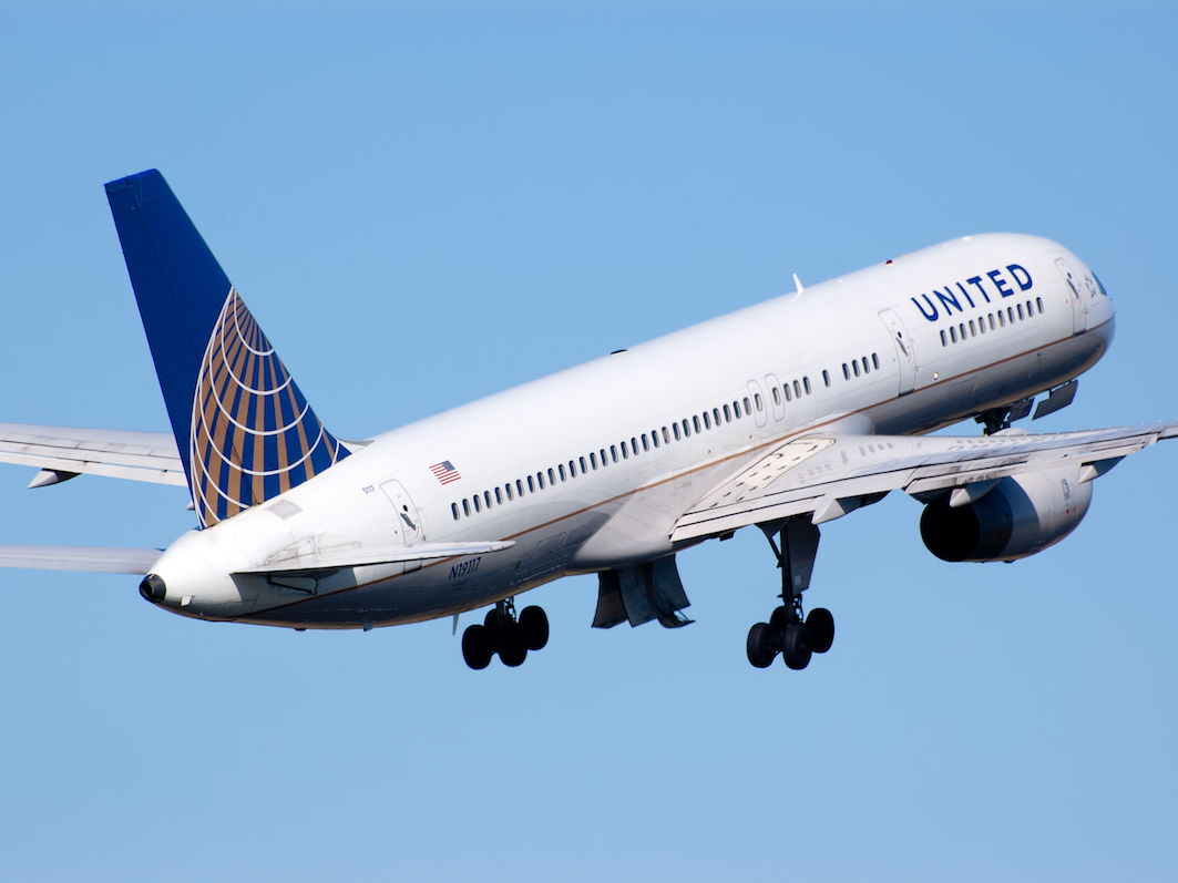 United had three dog-related mishaps last week.