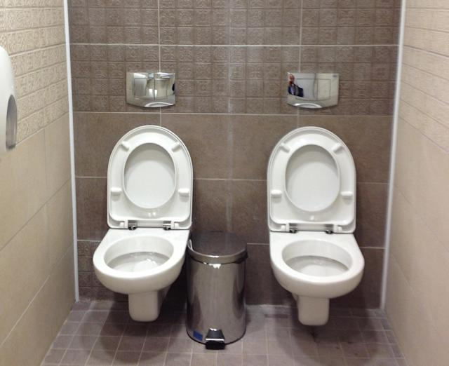 Twin toilets photo at Sochi Olympics goes viral