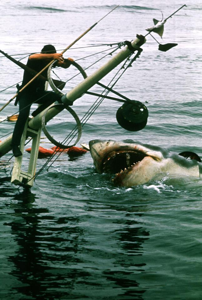 """<a href=""""http://movies.yahoo.com/movie/1800082735/info"""">Jaws</a> (1975): It defined what we've come to know as the summer movie season. It was the first blockbuster -- which, in retrospect, seems like a quaint notion. But its thrills and chills and suspense are just as fresh now as they were 35 years ago. Sure, the mechanical shark that preys on Amity Island looks a little, well, mechanical compared to the CGI effects that are available today. But in his youth, Steven Spielberg was wise enough to know that it's what you don't show -- what you just suggest -- that's even more frightening. And John Williams' startling score was simplicity itself. Clearly, it still isn't safe to go back in the water."""
