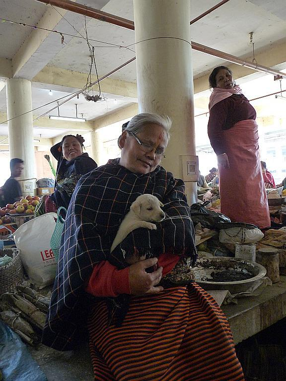 This adorable grandmother comforts a furry companion as she sells her ware in Ima Market.