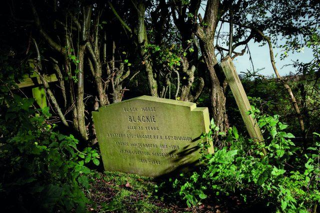 The gravestone of Blackie the war horse in Knowsley, Merseyside (Alun Bull/Historic England/PA)