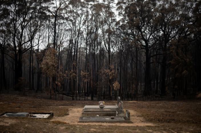Graves are seen next to burnt bushland at a cemetery in the village of Mogo