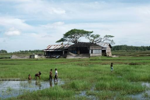 Myanmar govnt probe finds no campaign of abuse against Rohingya