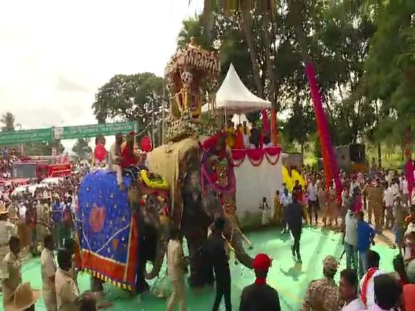 An elephant panicked due to loud noises during Dasara celebrations in Mandya. (Photo/ANI)