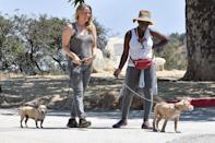 <p>Alicia Silverstone and her friend take their dogs for a walk in Los Angeles over the weekend.</p>