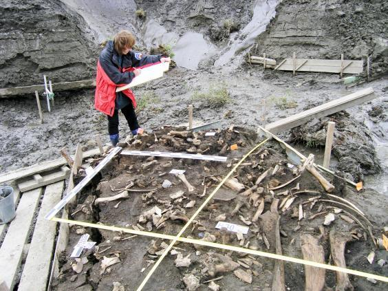 The site where the teeth were found (pictured) is near the Yana River in northern Russia (Elena Pavlova)