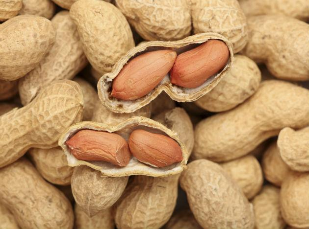 <b>Peanuts</b> <br>Fried, salted, or plain, peanuts are a must-have for the winters. The sugary 'chikki' that you may find in the local market should be kept handy. Peanuts in every form are a welcome food for body heat and proteins.