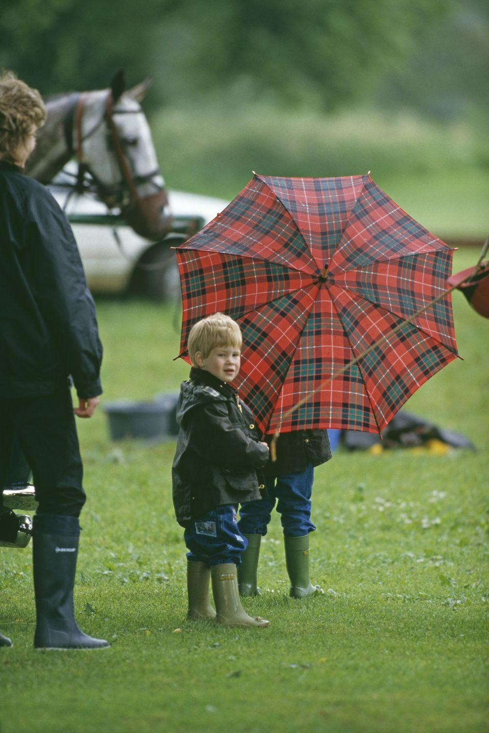 <p>Prince Harry stands on the sidelines of a polo match in Cirencester.</p>