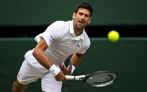 <span>54,000 wool-coated tennis balls were used at Wimbledon 2019, where vegan Novak Djokovic won another title</span> <span>Credit: Getty images </span>
