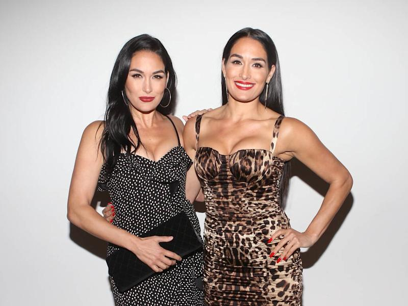 WWE twins Nikki and Brie Bella both pregnant