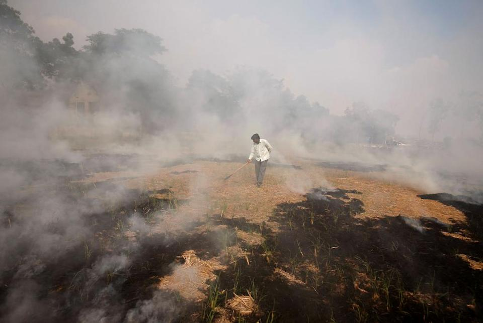 A farmer burns paddy waste stubble in a field on the outskirts of Ahmedabad, Gujarat