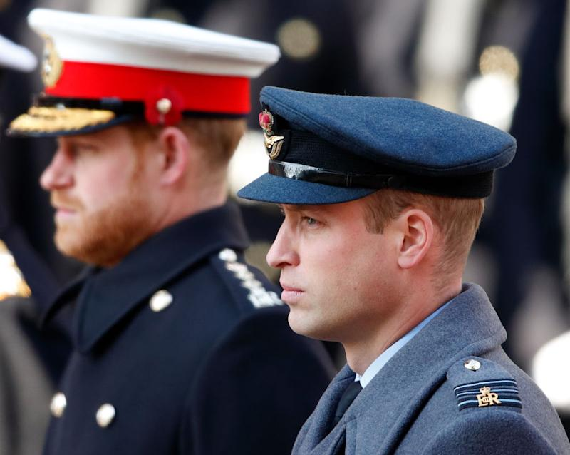 Prince William and Prince Harry in close image