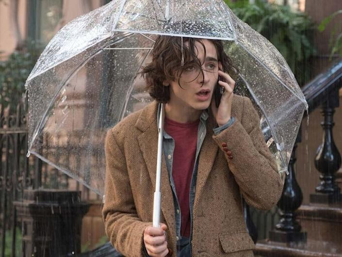 timothee chalamet a rainy day in new york