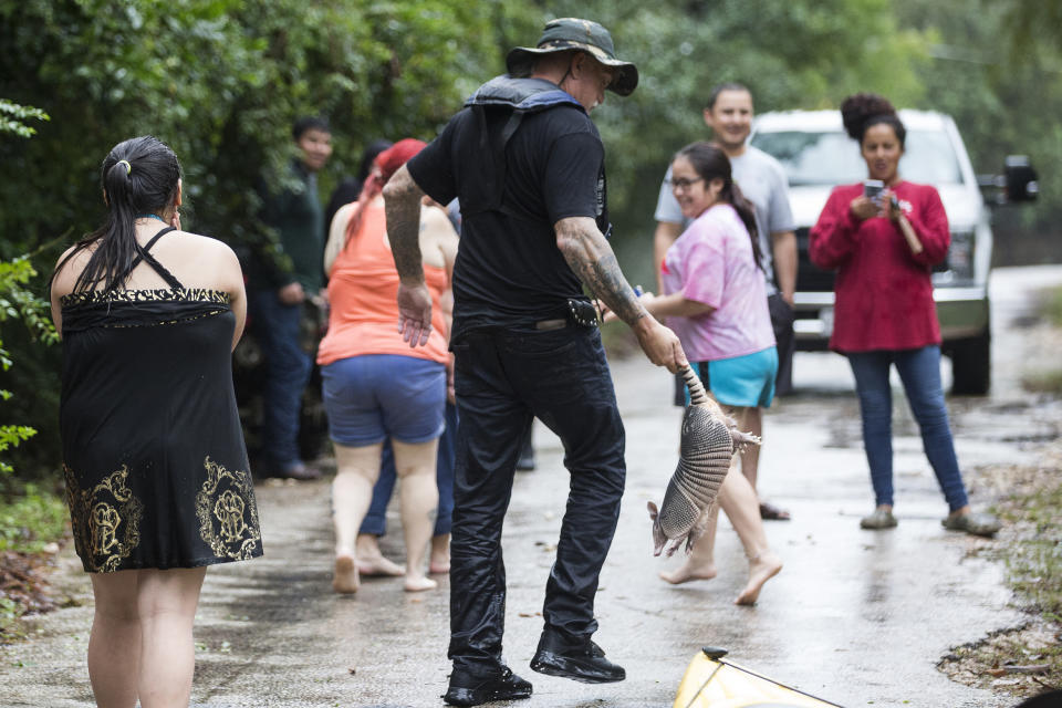 Donnie McCulley rescues an armadillo from a flooded neighborhood caused by heavy rain spawned by Tropical Depression Imelda on Sept. 19, 2019, in Patton Village. (Photo: Brett Coomer/Houston Chronicle via AP)