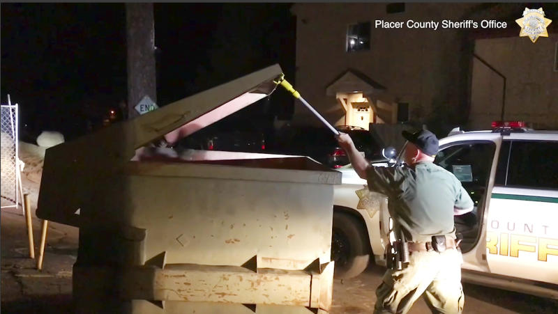 This Tuesday, Aug. 27, 2019 photo from video, second in a sequence, released by the Placer County Sheriff's Office, shows deputies using a pole to lift the lid of a trash container after a bear cub had fallen in and become trapped outside a motel in Kings Beach, Calif., on the north shore of Lake Tahoe. Deputies in Northern California helped a wailing baby bear reunite with its family after the cub got stuck inside the container The bear cub can be heard crying from inside the metal container in video recorded by deputies. A deputy opened the container with a pole and put a ladder inside, allowing the bear to scamper out and rejoin its family. (Placer County Sheriff's Office via AP)