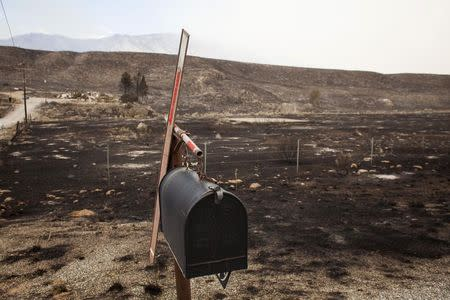A mailbox stands in a scorched countryside that was hit by the Carlton Complex fire near Pateros