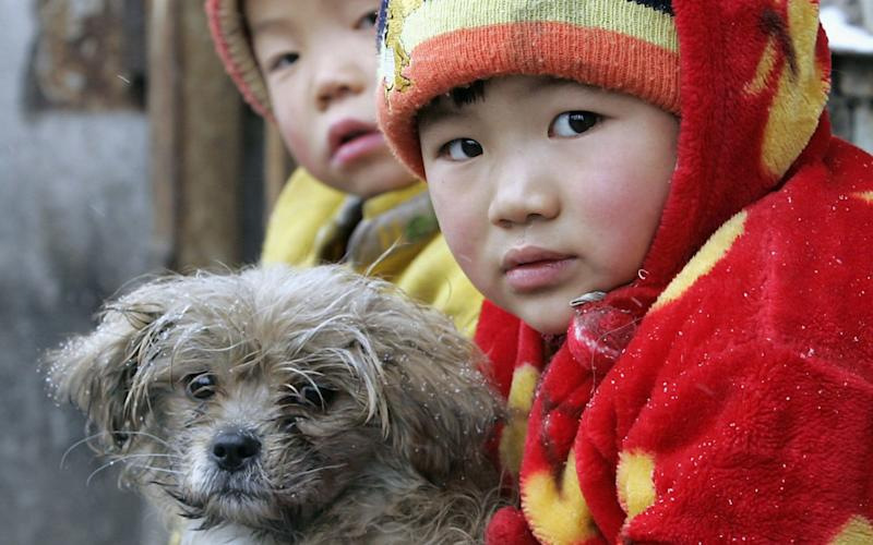 Two Chinese migrant children sit with their pet dog outside their shanty home in Beijing - AFP
