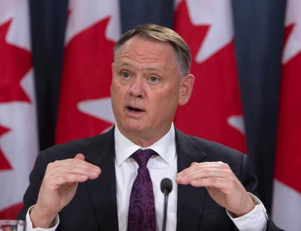 David McGuinty, chair of the National Security and Intelligence Committee of Parlmentarians, holds a news conference.