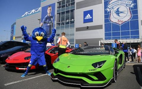Bartley the Bluebird, mascot of Cardiff City, poses for a photograph outside the stadium prior to the Premier League match between Cardiff City and Liverpool - Credit: GETTY IMAGES