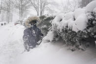 FILE - Arturo Diaz, 4, enjoys playing in a deep snow bank in Hoboken, N.J., Monday, Feb. 1, 2021. With leafy branches in winter, evergreens are especially good at catching snow, which can be bent, even broken by a heavy snow load. (AP Photo/Seth Wenig, File)