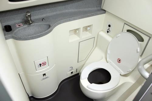 Image result for airplane bathroom