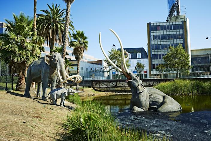 """A Columbian mammoth scene in the Lake Pit at the La Brea Tar Pits in Los Angeles. <span class=""""copyright"""">(Mario de Lopez / Natural History Museums of Los Angeles County)</span>"""