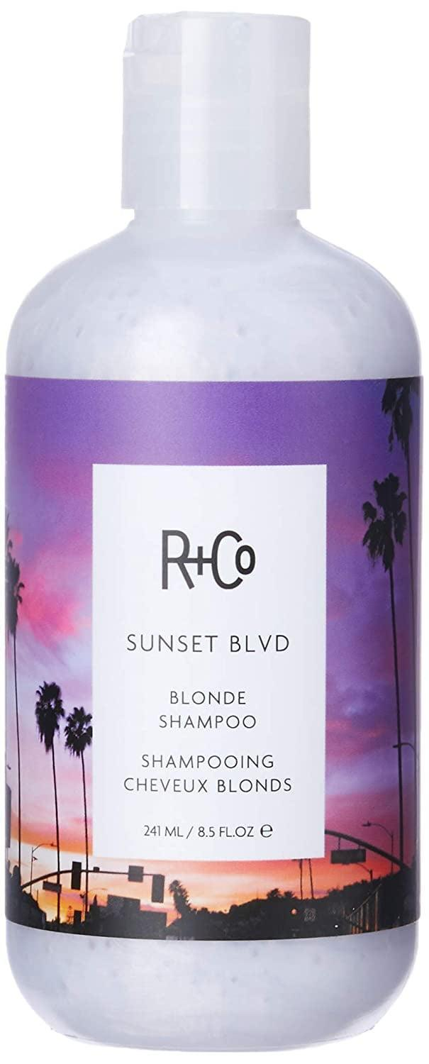<p>For a vegan purple shampoo option, try the <span>R+Co Sunset Blvd Blonde Shampoo</span> ($32). It uses natural mineral pigments to brighten blond hair and a rich and creamy coconut cleanser to remove impurities without drying out the hair of natural oils.</p>