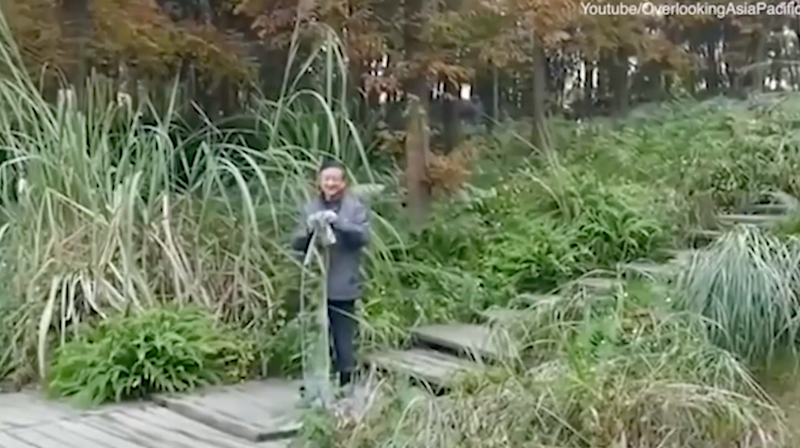 Footage claims to show an 'invisibility' cloak at work. Photo: Youtube